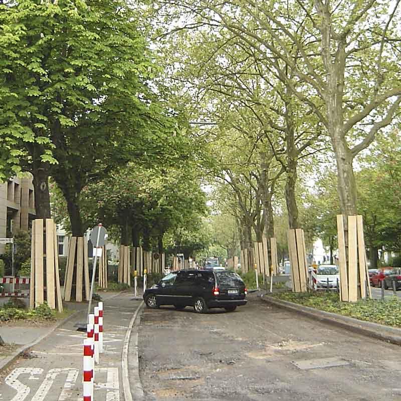 Baumschutz für Baustellen und Straßenbau. Für Kommunen und Straßenbauunternehmen.
